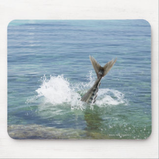 Fish splashing in the sea mouse pad