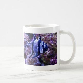fish,striped fish coffee mug
