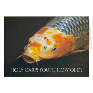 Fish Tale Carp Photo Funny Birthday Greeting Card