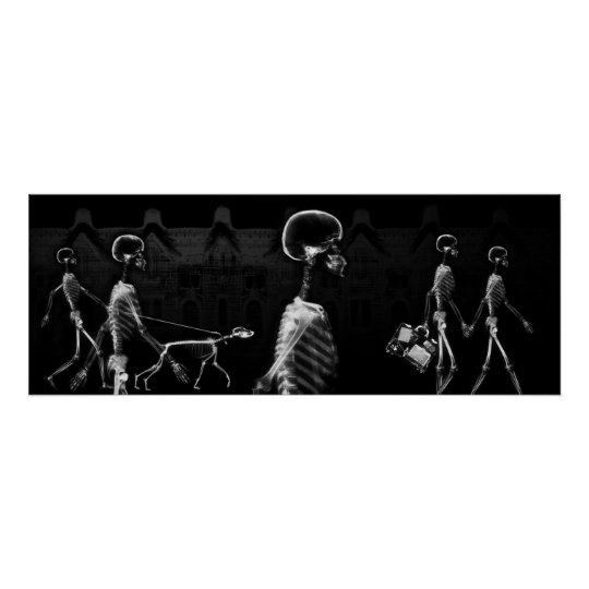 Fish Tank BKRD X-Ray Skeletons Midnight Stroll B&W Poster