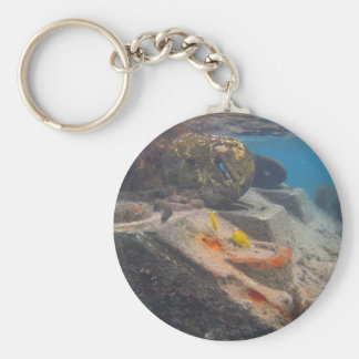 Fish Tank Key Ring