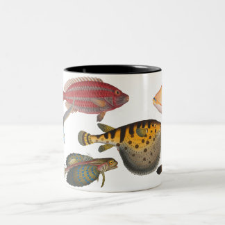 Fish Two-Tone Coffee Mug