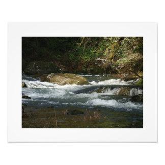 Fisherman River Steelhead Trout Fly Fishing Rapids Photo Art