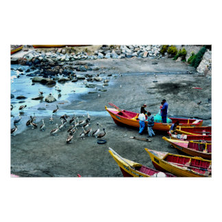 Fishermen and pelicans, Valparaiso, Chile Poster