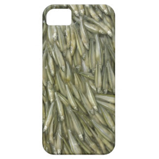 Fishes Barely There iPhone 5 Case