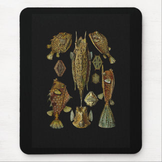 Fishes in Golden Browns Mouse Pad