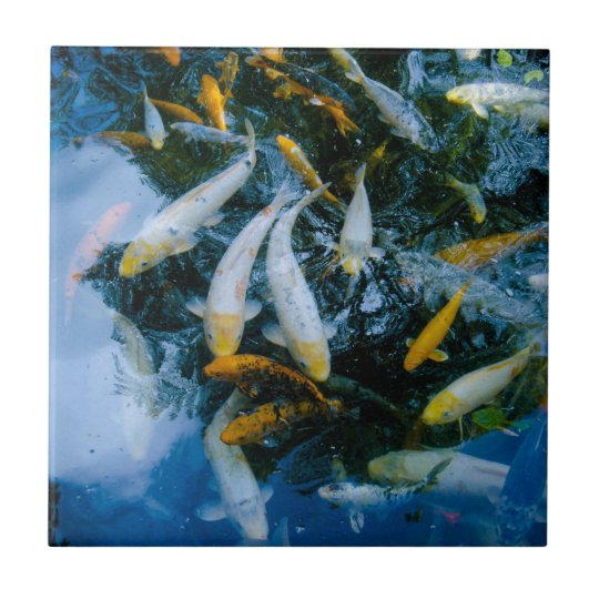 Fishes in pond small square tile