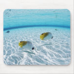 Fishes in the sea 2 mouse mat