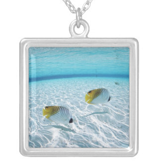 Fishes in the sea 2 silver plated necklace