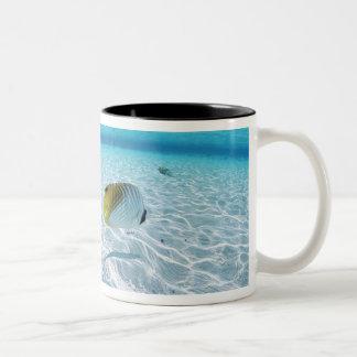 Fishes in the sea 2 Two-Tone coffee mug