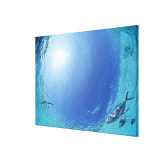 Fishes in the sea 4 gallery wrap canvas