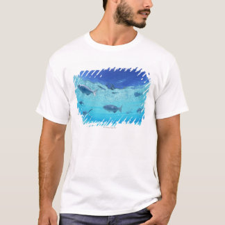 Fishes in the sea 4 T-Shirt