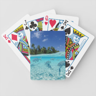 Fishes in the sea bicycle playing cards