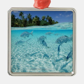 Fishes in the sea christmas ornament