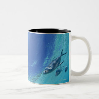 Fishes in the sea Two-Tone coffee mug