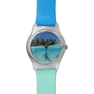 Fishes in the sea watch