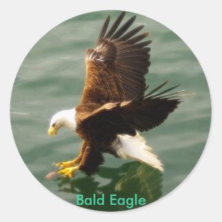 Fishing Bald Eagle Motivational Sticker Gift