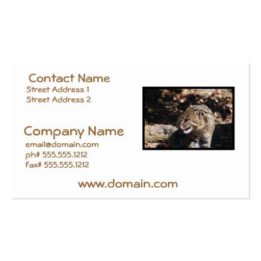 Fishing Cat Business Card