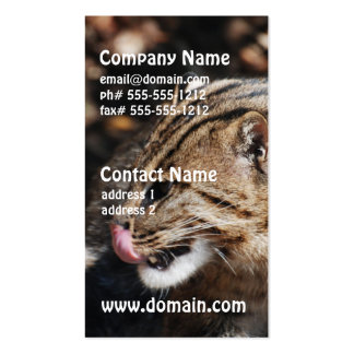 Fishing Cat Business Card Templates