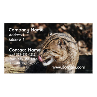 Fishing Cat Business Cards