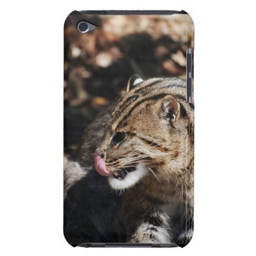 Fishing Cat iPod Touch Cases