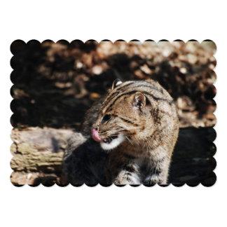 Fishing Cat Custom Invites