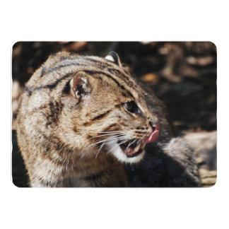 Fishing Cat Licking His Chops 13 Cm X 18 Cm Invitation Card