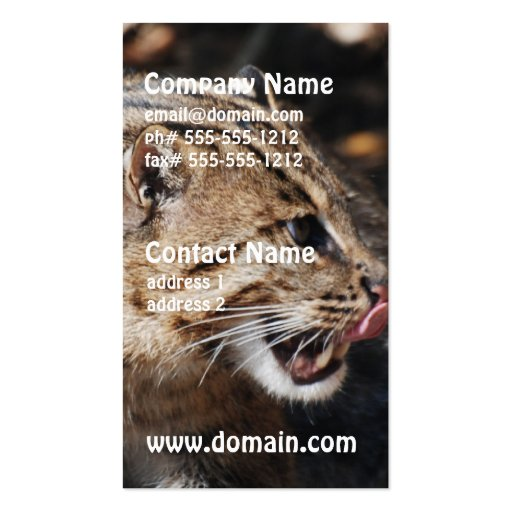 Fishing Cat Licking His Chops Business Card Template