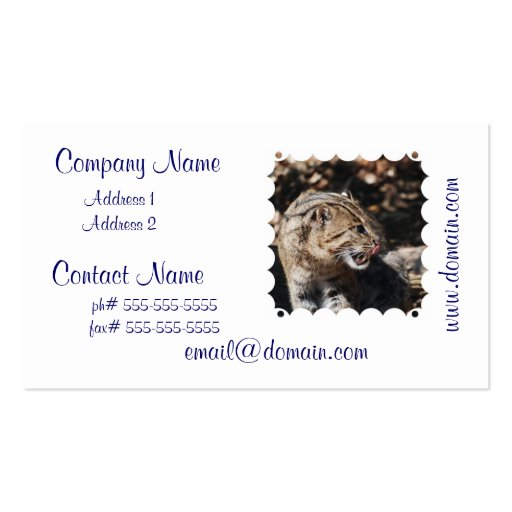 Fishing Cat Licking His Chops Business Card