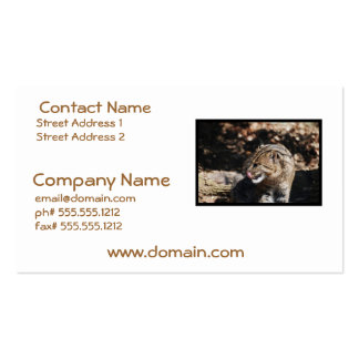 Fishing Cat Pack Of Standard Business Cards