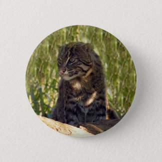 FishingCat008 6 Cm Round Badge