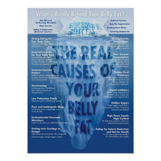 Fitness Infographic Gym Poster - Belly Fat
