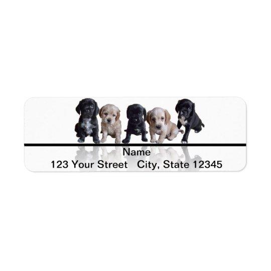 Five Black and Tan Cocker Spaniel Puppies