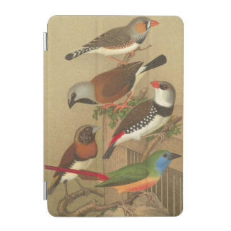 Five Colorful Pet Birds Perched on a Branch iPad Mini Cover