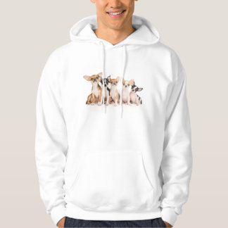 Five cute puppies hoodie