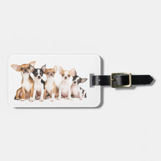 Five cute puppies luggage tag