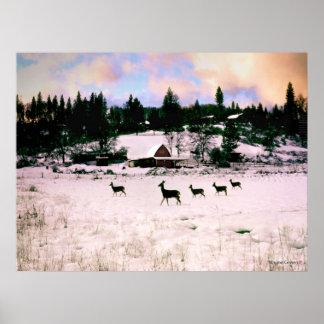 Five Deer - Ananda Posters