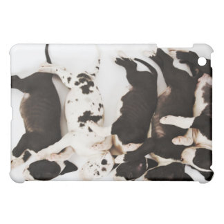 Five Harlequin Great Dane puppies sleeping in iPad Mini Covers