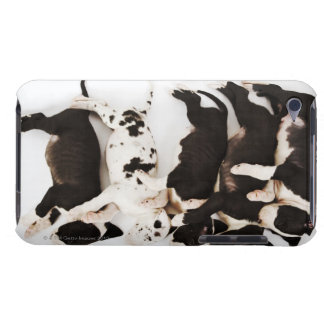 Five Harlequin Great Dane puppies sleeping in iPod Touch Covers