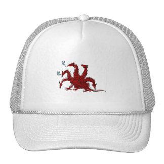 Five headed red dragon cap