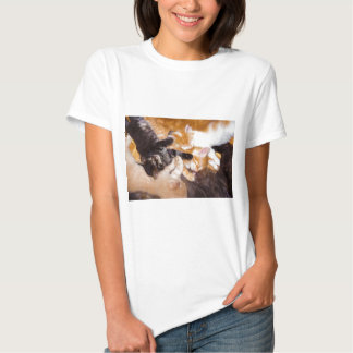 Five Kittens Sleeping with their Mother Cat Tee Shirts