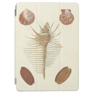 Five of a Kind Seashells iPad Air Cover