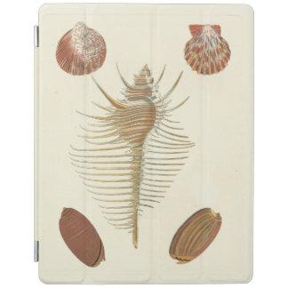 Five of a Kind Seashells iPad Cover