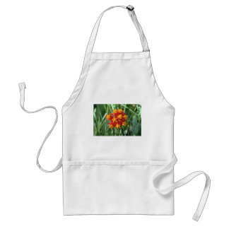 Five-petaled Yellow Cupped Flowers flowers Apron