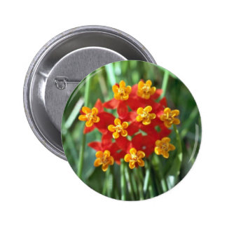 Five-petaled Yellow Cupped Flowers flowers Pinback Buttons