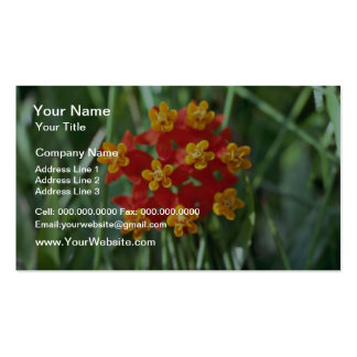 Five-petaled Yellow Cupped Flowers flowers Business Card