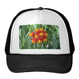 Five-petaled Yellow Cupped Flowers flowers Mesh Hat
