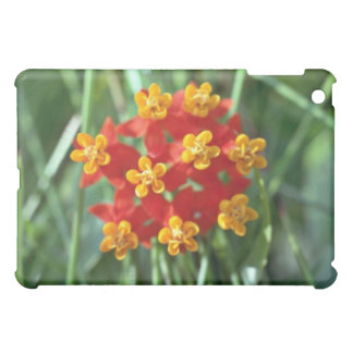 Five-petaled Yellow Cupped Flowers flowers Cover For The iPad Mini
