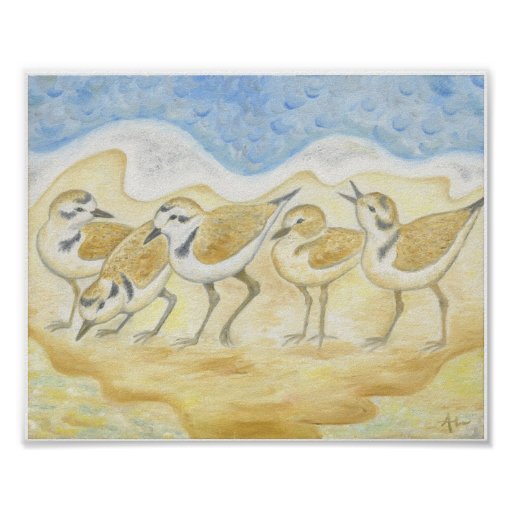 Five Plovers on the Beach art print