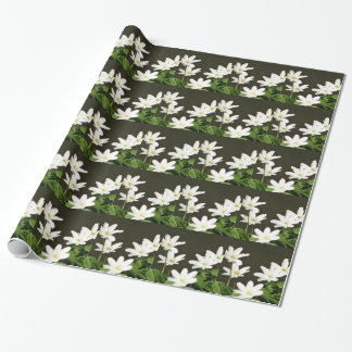 Five pretty white flowers wrapping paper